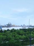 Chính Chủ Cần Bán Gấp Căn 2PN 2WC View Sông SG Mặt Tiền Đại Lộ Mai Chí Thọ