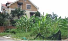 Cần tiền Bán gấp đất nền biệt thự An Phú An Khánh quận 2, DT 10x20m giá cực rẻ 35triệu/m2