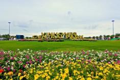Cho thuê căn hộ vinhomes central park, 1 phòng ngủ, view công viên,giá 550 usd