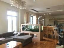 Cho thuê Villa Đầy Đủ Nội Thất , Thiết Kế Phong Cách Hiện Đại Trung Tâm Phường An Phú Quận 2 . Giá